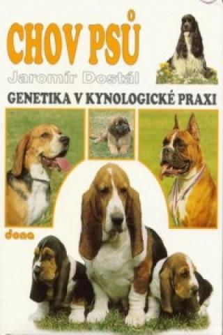 Chov psů