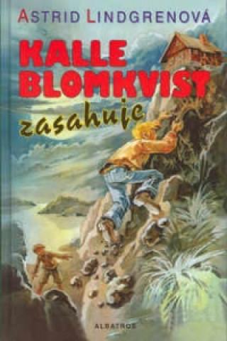 Kalle Blomkvist zasahuje