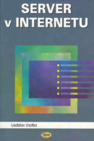 Server v Internetu