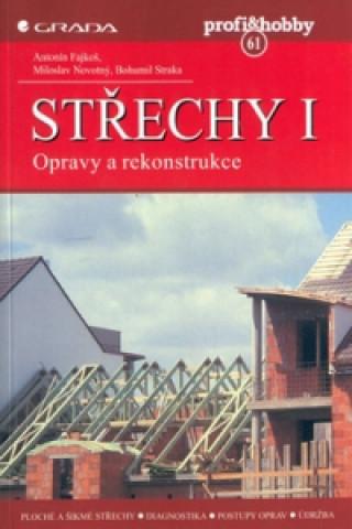 Střechy I. Opravy a rekonstr.