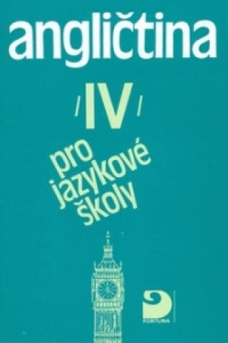 Angličtina pro jazykové školy IV