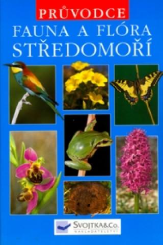 Fauna a flóra středomoří