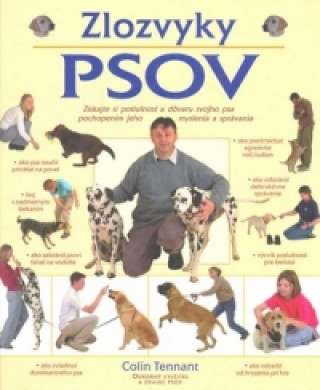 Zlozvyky psov