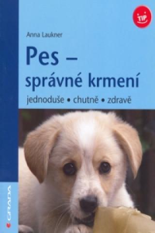 Pes - správné krmení