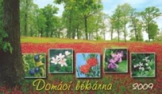Domácí lékárna 2009 - stolní kalendář