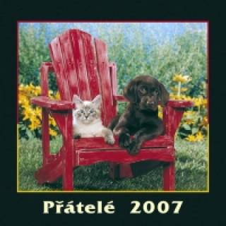 Přátelé 2007 - nástěnný kalendář
