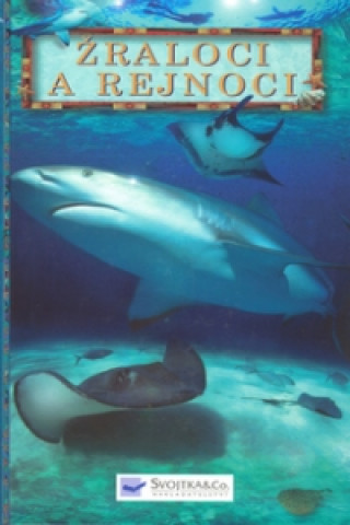 Žraloci a rejnoci