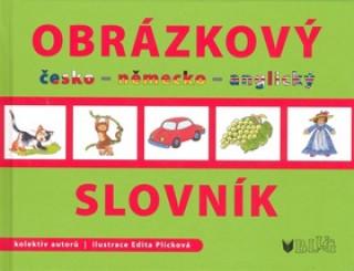 Obrázkový slovník česko -  německo - anglický