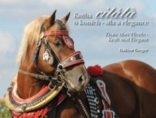 Kniha citátů o koních – síla a elegance