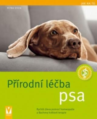 Přírodní léčba psa