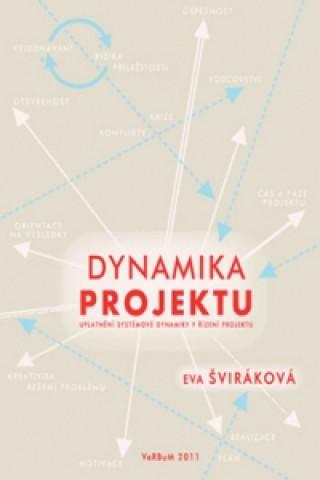 Dynamika projektu