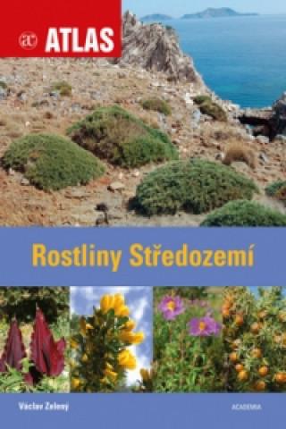 Rostliny Středozemí
