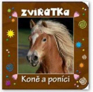 Zvířátka Koně a poníci