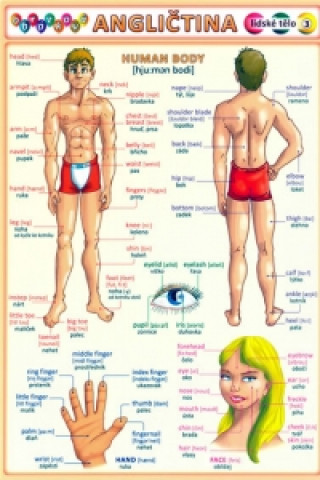 Carte Obrázková angličtina 3 lidské tělo Petr Kupka