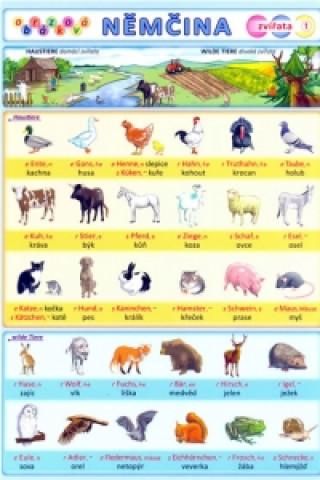 Obrázková němčina 1 zvířata