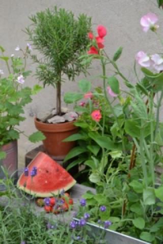 Zahrádka v květináči