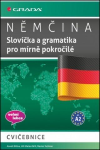 Němčina Slovíčka a gramtika pro mírně pokročilé