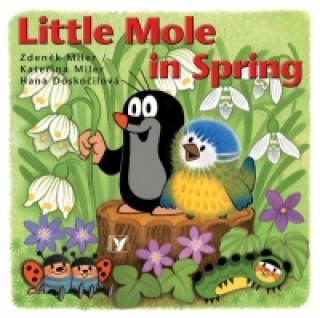 Little Mole in Spring