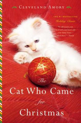The Cat Who Came for Christmas. Die Katze, die zur Weihnacht kam, englische Ausgabe