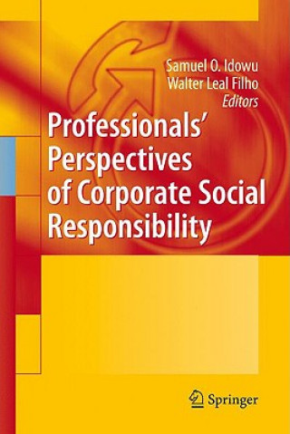 Professionals Perspectives of Corporate Social Responsibility