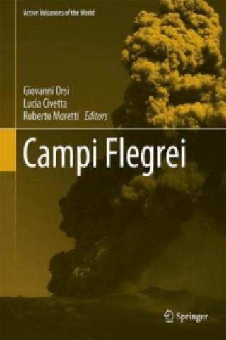 Carte Campi Flegrei Giovanni Orsi