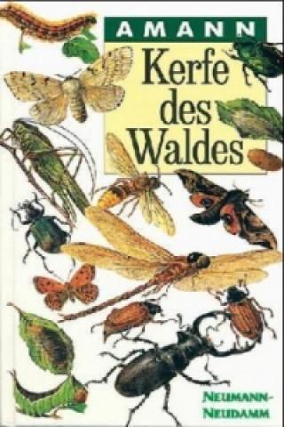 Carte Kerfe des Waldes Gottfried Amann