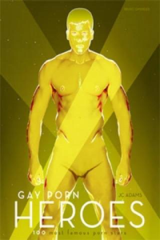 gay sex ve čtení