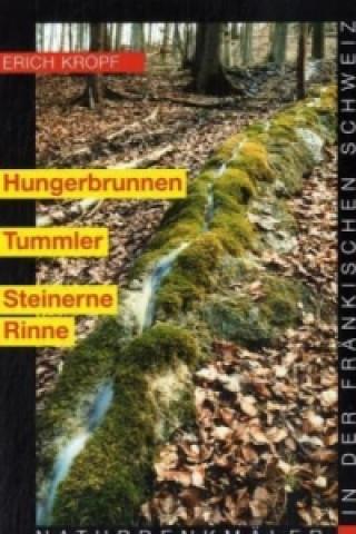 Hungerbrunnen, Tummler, Steinerne Rinne