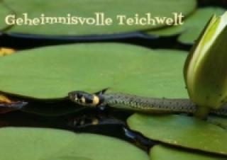 Geheimnisvolle Teichwelt (Posterbuch DIN A2 quer)