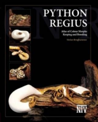 Python Regius, English Edition