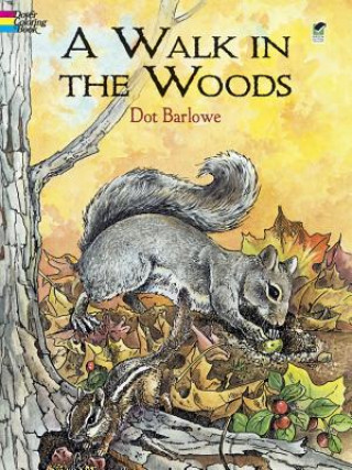 Walk in the Woods Coloring Book
