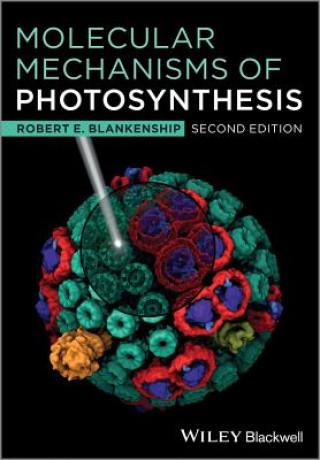 Molecular Mechanisms of Photosynthesis