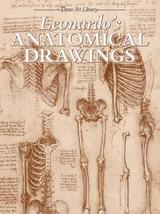 Leonardo's Anatomical Drawings