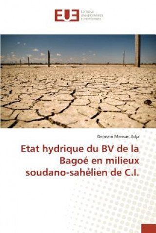 Carte Etat Hydrique Du Bv de la Bago  En Milieux Soudano-Sah lien de C.I. Adja-G