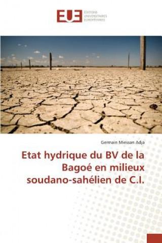 Könyv Etat hydrique du BV de la Bagoé en milieux soudano-sahélien de C.I. Adja-G