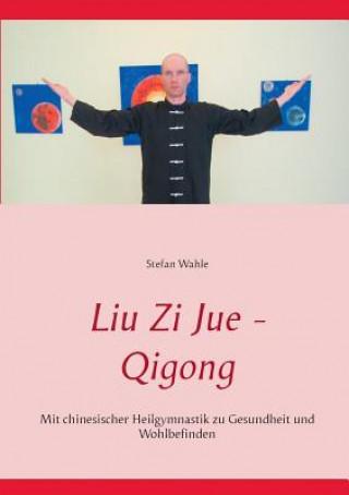 Kniha Liu Zi Jue - Qigong Stefan Wahle