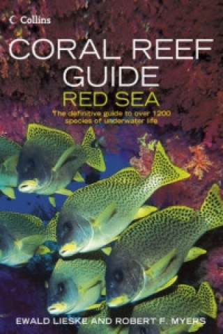 Carte Coral Reef Guide Red Sea Robert Myers