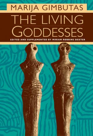 Carte Living Goddesses Marija Gimbutas