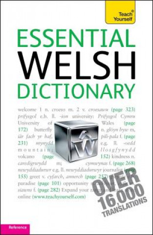 Essential Welsh Dictionary: Teach Yourself