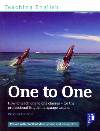 Teaching English One to One