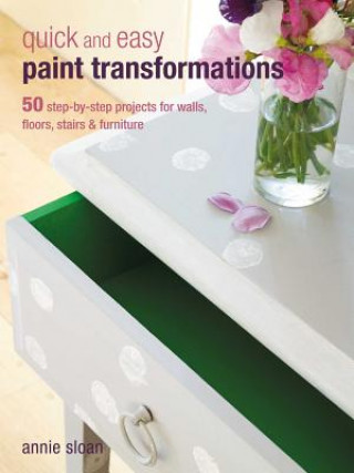 Carte Quick and Easy Paint Transformations Annie Sloan