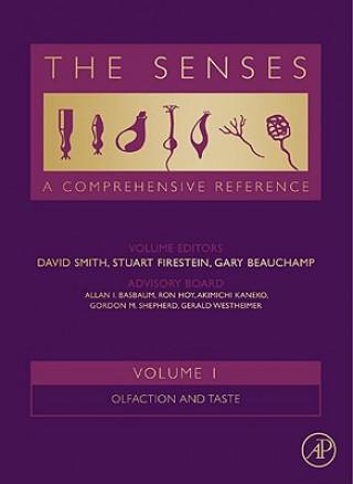Senses: A Comprehensive Reference