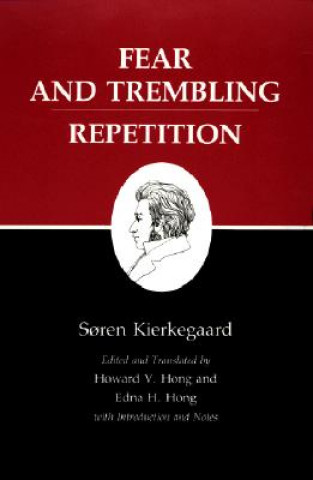 Kierkegaard's Writings, VI, Volume 6