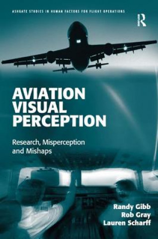 Aviation Visual Perception