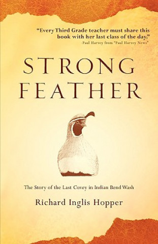 Strong Feather
