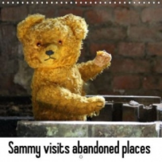 Sammy visits abandoned places (Wall Calendar 2015 300 &times 300 mm Square)