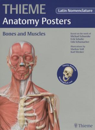 Thieme Anatomy Poster, Latin Nomenclature, Bones and Muscles