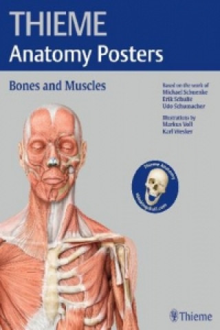 Thieme Anatomy Poster, English Nomenclature, Bones and Muscles