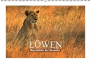 Majestäten der Savanne Löwen (Wandkalender 2015 DIN A2 quer)