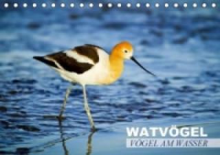 Vögel am Wasser Watvögel (Tischkalender 2015 DIN A5 quer)